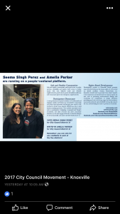 Direct Mail piece supporting District 3 Seema Perez and District 4 Write in Amelia Parker.