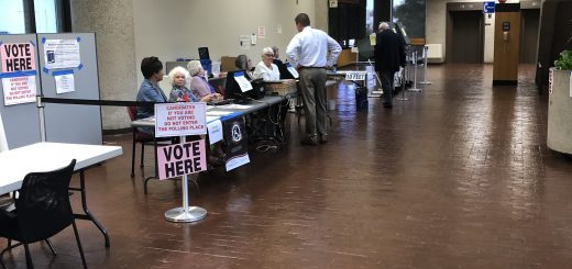 day one 8/7/2019 of City of Knoxville Early Voting at the City County Building.
